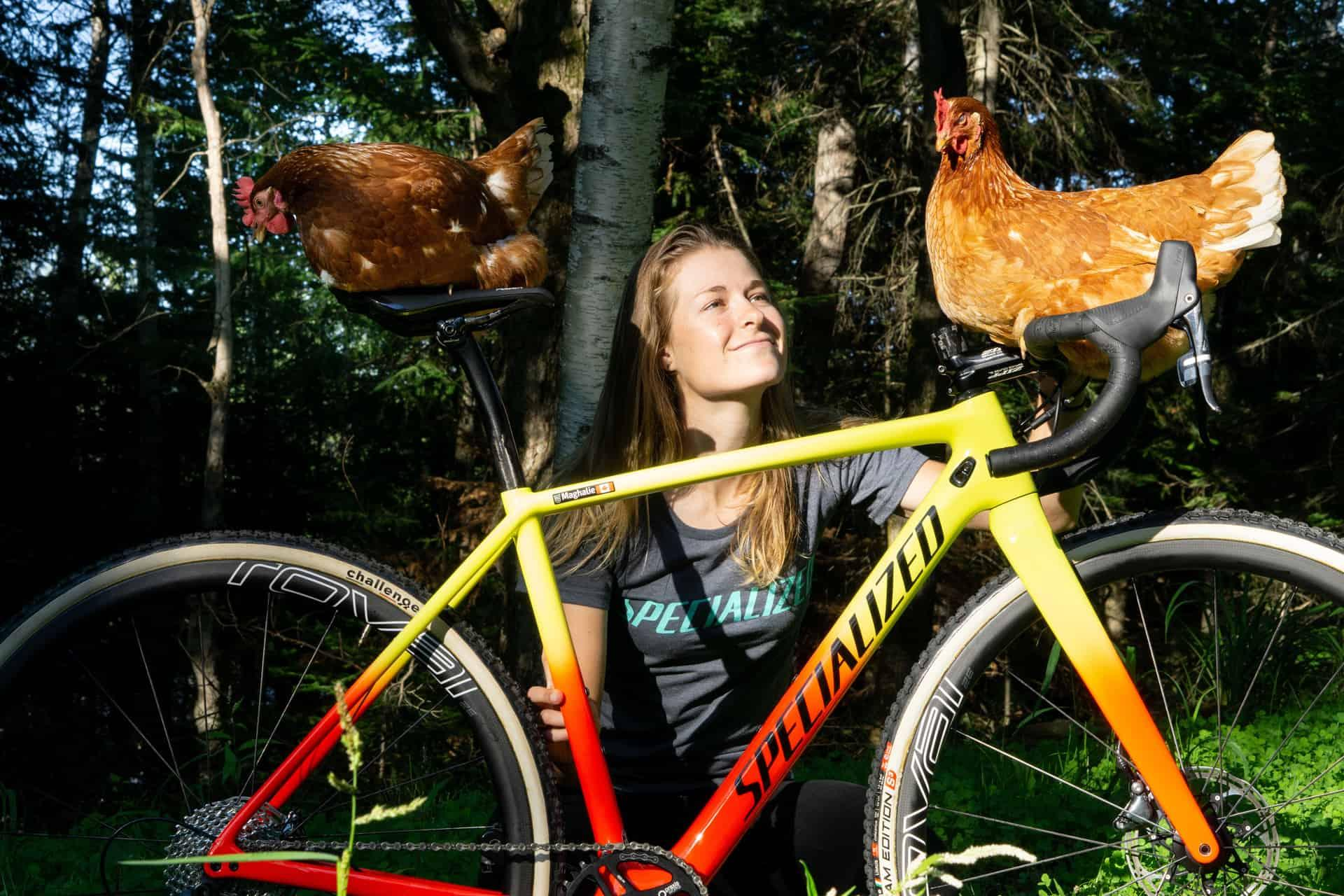 chicken standing on bicycle